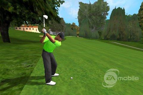 Tiger Woods '09 3